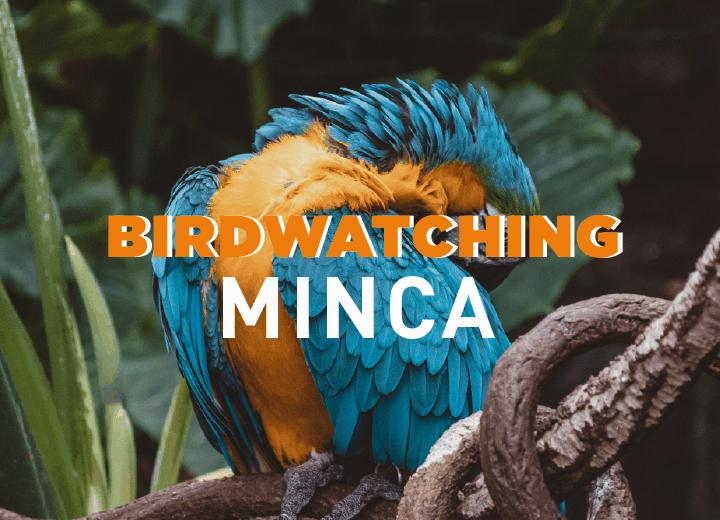 Observación de aves en la reserva natural La Victoria